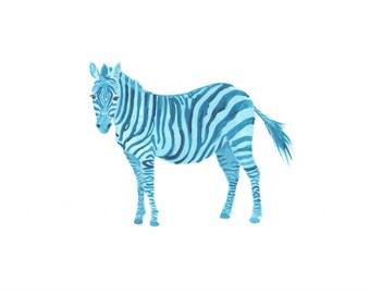 Blue Zebra Print - 10x8