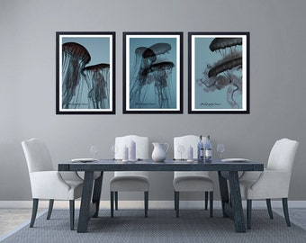 Photography Triptych The ballet of jellyfish, Fine Art Print, contemporary Cottage, Chic Decor, Shades of gray and blue, graceful curves,