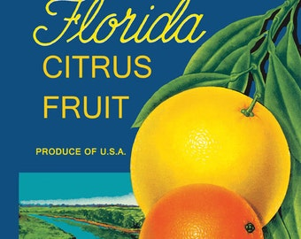 Florida Orange Fruit Citrus Kitchen Fresh Always the Best American Vintage Poster Repro FREE SHIPPING in USA