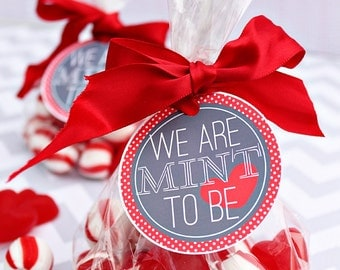 We are MINT to Be Printable Party Tags - Cupcake Toppers - Printable Mint Valentines Day Party Favors - Valentine Printables