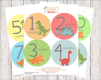 The Camden | Baby Boy Dinosaur 12 Monthly Growth Stickers