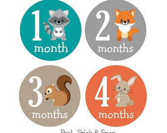 Monthly Baby Sticker, Woodland Animal, Baby Month Stickers, Milestone Stickers, Baby Boy & Girl, Baby Shower Gift