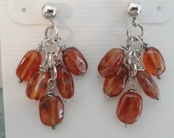 Garnet Earrings  -  #320