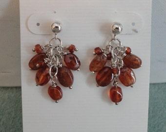 Garnet Earrings  -   #321