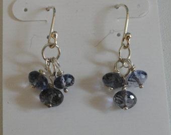 Iolite Earrings  -  #342
