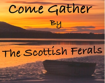 Scottish Traditional Music CD by The Scottish Ferals  (Also available on itunes)
