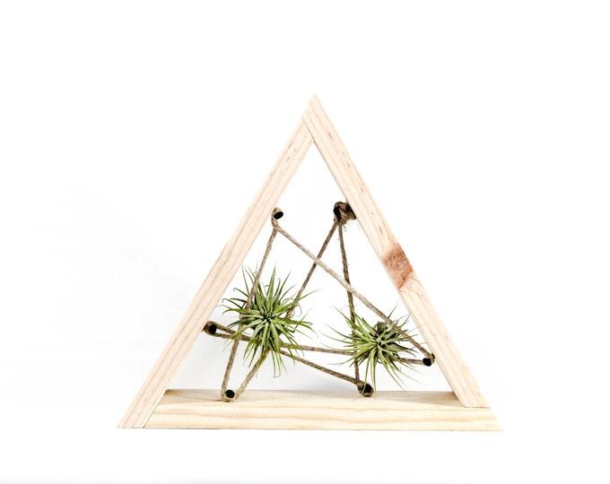 Triangle Wood Air Plant Holder - Organic Cording