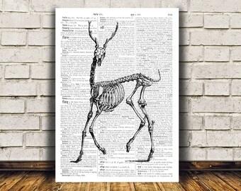 Macabre art Deer skeleton poster Modern decor Dictionary print RTA6