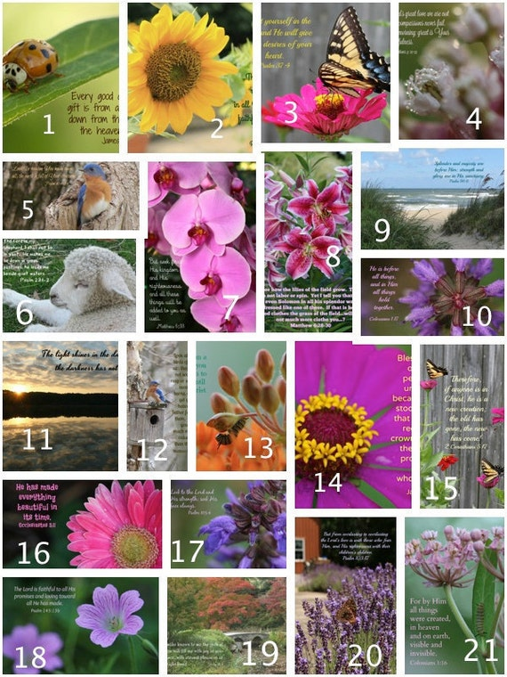 Pick any 4 Photo Greeting Cards; Nature; Gift; Inspirational; Scripture