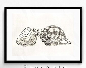 Turtle decal, Turtle art, Turtle Print, sketch decal, Animal wall art, Turtle Wall Art, Nursery Wall Art Print, Baby Turtle, Strawberry
