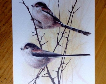 Long Tailed Tits Greetings Card