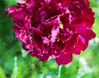 """Mini Photo Paintings - """"In Bloom"""""""