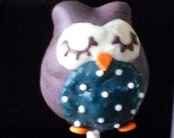 Dozen Owl Cake Pop Boquet