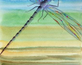 Dragonfly - Original Watercolor Painting Wall Art Nursery Art