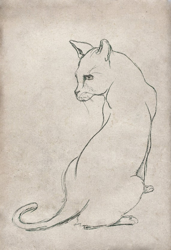Cat Sketch Wall Art Print from an original line drawing by Corinne Dany / cat / line drawing / texture / fine art / cat posing