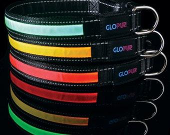 GLOPUP LED Dog Collar - 3 Colors - 4 Sizes - Make Your Dog Visible & Safe