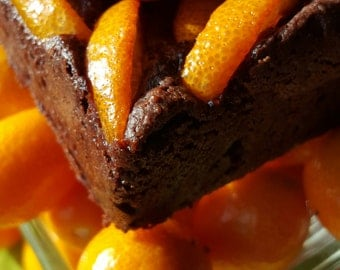 Kumquat Brownies!