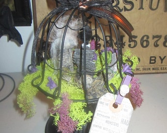 AlTeReD aRt HaLLowEEn dEcOr cEmEtEry at MiDniGhT RaVen SkElEtoN skuLL OOak NoiR