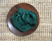 hearty JALAPENO worsted weight superwash merino yarn