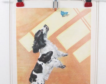Vintage Dog Print Cocker Spaniel Diana Thorne Color Illustration Book Plate