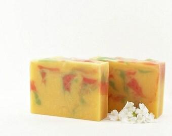 Essential Oils Soap, Citrus Soap, Colorful, Vegan Gift, Gift Idea for Women, Men, Kids,Teens, 4 Essential Oils | Fruit Punch Swirl