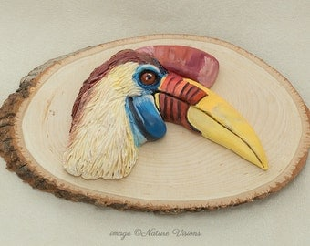 Bird Art Polymer Clay Hornbill Sculpture on Basswood, Wildlife Decor, Bas Relief Wall Art, Bird Lover Gift