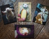 RAT MAGNETS - set of Four Marty Mouse Magnets for your Fridge or Office