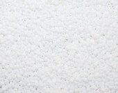 6/0 (1.5mm Hole) Matte Opaque White MIYUKI Glass Seed Beads 20 Grams (DS412)