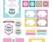 Owl Woodland Birthday Owl Party Kit Woodland Birthday Package Printables