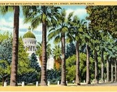 Vintage California Postcard - California State Capitol thru the Palm Trees (Unused)