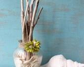 Rustic Coastal chic Driftwood and Shell Arrangement , Nautical Home Decor , Beach Decoration 959562
