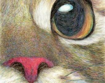 cat art print-The Face - cat drawing pet portrait, cat lover's gift, realistic artwork, nursery room decor, home wall dorm art, A3 print A4