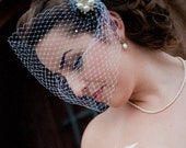 White Birdcage veil with white feathers and a rhinestone and pearl brooch.