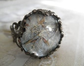 Dandelion Seed Victorian Filigree Gunmetal Glass Ring Atop Stardust Dusty Blue Background-Ride The Wind-Symbolizes Happiness-Gifts Under 20