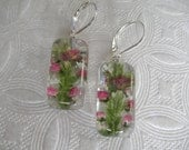 Pink Veronica,Queen Anne's Lace, Frosted Ferns Pressed Flower Glass Rectangle Leverback Earrings-Gifts Under 30-Symbol Of Peace,Prosperity