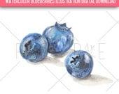 Blueberries Watercolor Illustration - Digital Download, Clip Art, Food, Fruit, Nutrition
