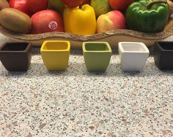 Ceramic Pots w/ Succulent option
