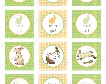 Rabbit cupcake toppers - for birthday party or baby shower, 2 inch circles, bunny, customised tags,  - Digital Instant Download CT027