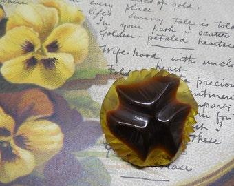 "Carved 2 Color Applejuice & Brown Bakelite Dome Button 1.1/8"""