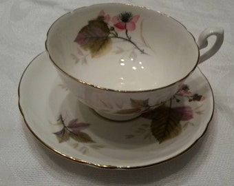 Shelley Tea Cup and Saucer With The Bramble Pattern circa 1940-1966  DSC