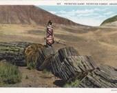 Petrified Giant- 1920s Antique Postcard- Petrified Forest, Arizona- Navajo Indian- Rock Formation- Landscape Souvenir- Paper Ephemera Unused