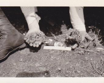 Sage Grouse Chicks- 1930s Vintage Photographs- SET of 2- Bird's Nest- Speckled Eggs- Nature Photography- Wildlife Photo- Paper Ephemera