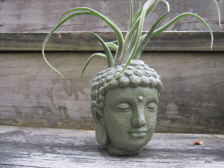 Buddha Head Decor Buddha Head Pot Etsy