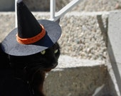 Pet costume Cat Witch Hat Pet Accessory Costume Wicked Halloween prop photo opportunity Dog Handmade trick or treating hat medium small