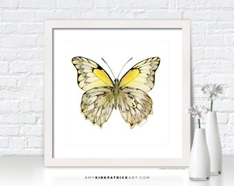 Yellow BUTTERFLY Painting, Butterfly Art, Butterfly Print, Butterfly Watercolor, Butterfly Greeting Cards, 44 Hesperocharia Graphite