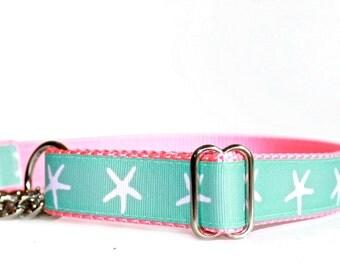 Martingale Dog Collar, Chain Martingale, Starfish Dog Collar