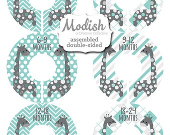 Closet Dividers, Assembled, Baby Closet Dividers, Closet Organizers, Boy, Giraffe Nursery Decor, Giraffes Blue Teal Gray, Baby Shower Gift