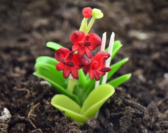 Miniature Red Orchid Flower Glass Terrarium Filler Hand Made Clay Plant Scale 1:12 Terrarium Supplies Jewelry Supplies ()