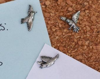 Bird Pushpins
