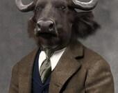 Oxford - Ox Print - Anthropomorphic - Wildlife Art - Bull Art - Whimsical Art - Photo Collage - Mixed Media Art Print - Unusual Art Print